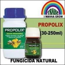 PROPOLIX de TRABE   Fungicida Natural   Bioestimulador