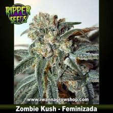 Zombie Kush – Feminizada – Ripper Seeds