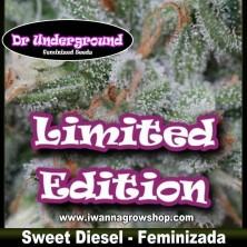 Sweet Diesel – Feminizada – DR Underground