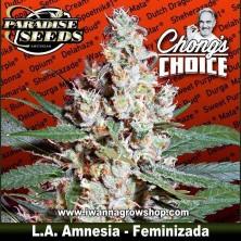 L.A. Amnesia - Feminizada - Paradise Seeds
