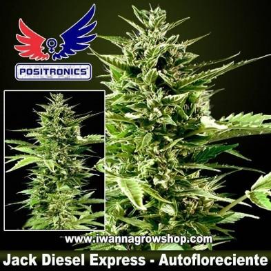 Jack Diesel Express – Autofloreciente