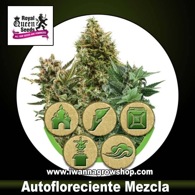 Autofloreciente Mezcla