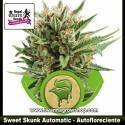 Sweet Skunk Automatic – Autofloreciente – Royal Queen