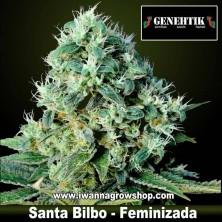 Santa Bilbo
