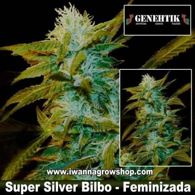 Super Silver Bilbo – Feminizada – Genehtik Seeds