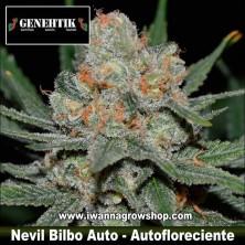 Nevil Bilbo Auto – Autofloreciente – Genehtik Seeds