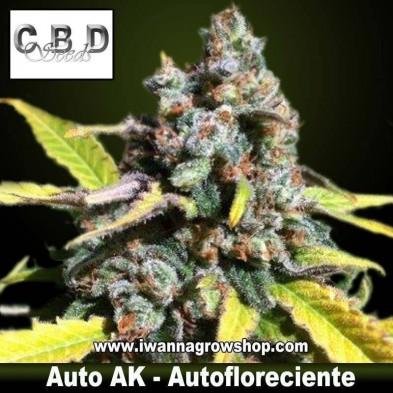 Auto AK – Autofloreciente – CBD Seeds