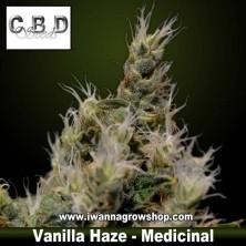 Vanilla Haze
