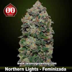Northern Lights – Feminizada – 00 Seeds