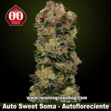 Auto Sweet Soma