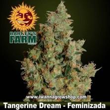 Tangerine Dream – Feminizada – Barney´s Farm