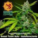 Sweet Tooth Auto - Barneys Farm - Autofloreciente