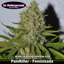 PainKiller – Feminizada – DR. Underground