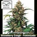 Strawberry Cough – Feminizada – Dutch Passion
