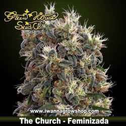 The Church – Feminizada – Green House