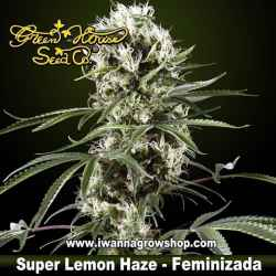 Super Lemon Haze feminizada - Green House - 3, 5 y 10 u.