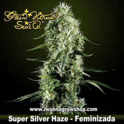 Super Silver Haze feminizada - Green House - 3, 5 y 10 u.