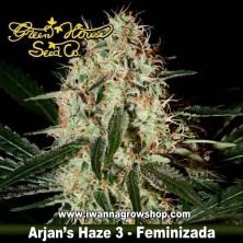 ARJAN´S HAZE 3 de GREEN HOUSE | Feminizada | Sativa