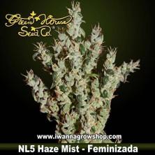 NL5 Haze Mist – Feminizada – Green House
