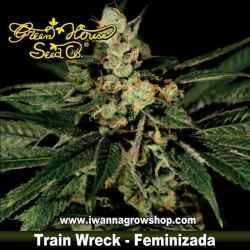 TRAIN WRECK de GREEN HOUSE | Feminizada | Indica