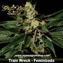 Train Wreck – Feminizada – Green House