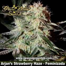 ARJAN´S STRAWBERRY HAZE de GREEN HOUSE | Feminizada | Sativa