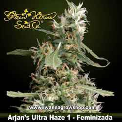 Arjan's Ultra Haze 1 – Feminizada – Green House