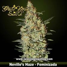 NEVILLE'S HAZE de GREEN HOUSE | Feminizada | Sativa