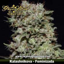 Kalashnikova – Feminizada – Green House