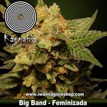 Big Band – Feminizada