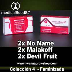 COLECCION 4 de MEDICAL SEEDS - semillas feminizadas (MIX)