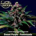 Sweet Purple – Feminizada – Paradise Seeds