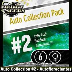 AUTO COLLECTION PACK 2 de PARADISE SEEDS