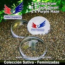 COLECCIONISTA SATIVA de POSITRONICS | Feminizadas