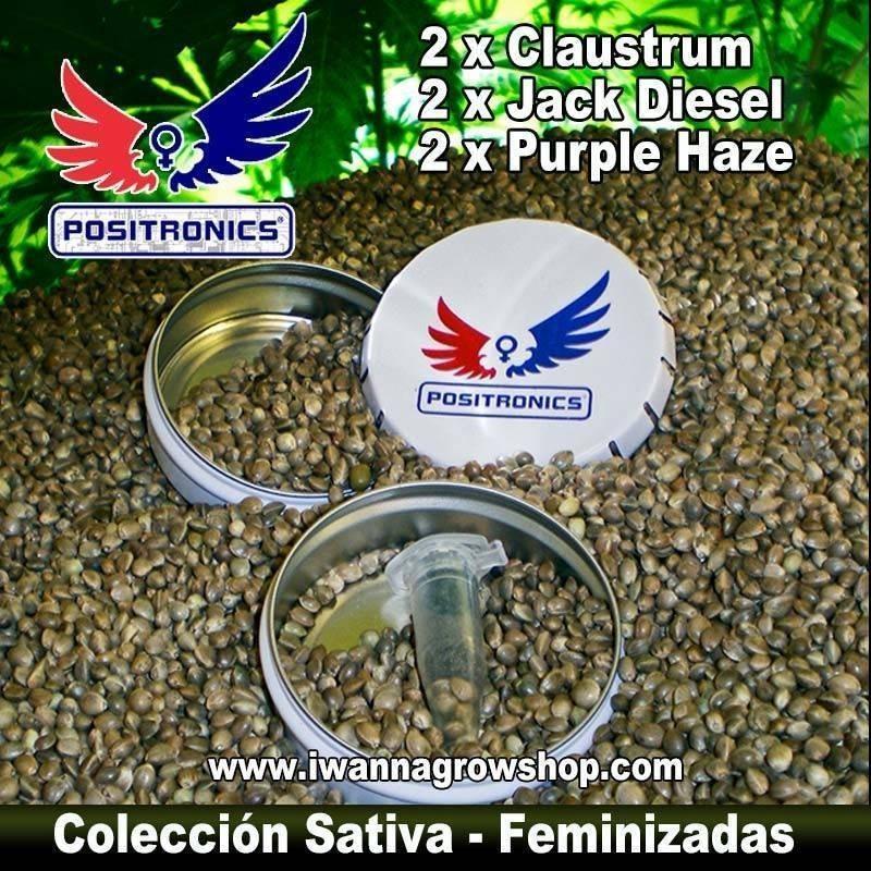 COLECCIONISTA SATIVA de POSITRONICS - semillas feminizadas (MIX)
