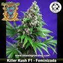 Killer Kush F1 Fast Version – Feminizada – Sweet Seeds