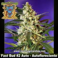 FAST BUD 2 AUTO (SWEET SEEDS) (AUTOMATICA)