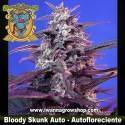 Bloody Skunk Auto – Autofloreciente – Sweet Seeds