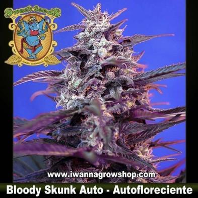 Bloody Skunk Auto – Autofloreciente – Sweet Seeds