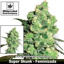 Super Skunk – Feminizada
