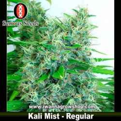 Kali Mist – Regular – Serious Seeds