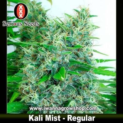 Kali Mist – Regular – Serious Seeds