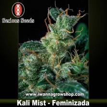 Kali Mist – Serious Seeds – Feminizada