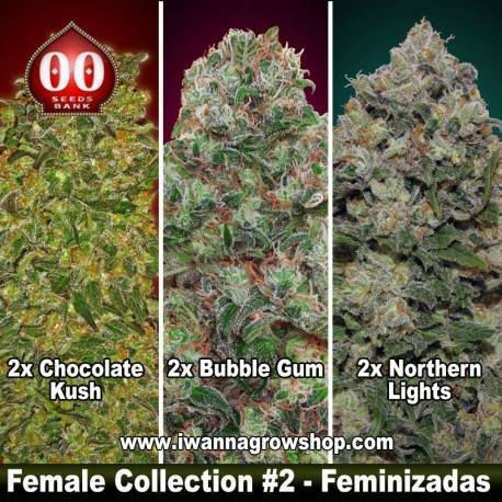 Female Collection 2