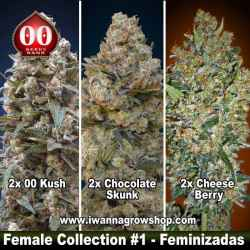 Female Collection 1
