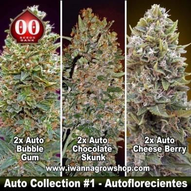 Auto Collection 1 – Autoflorecientes – 00 Seeds