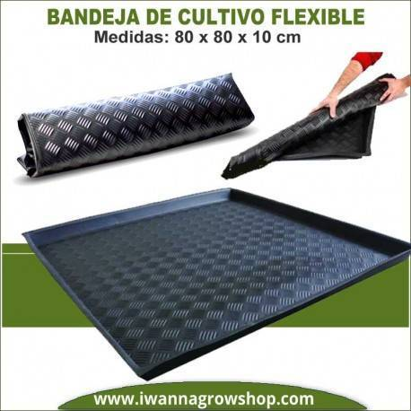 Bandeja Flexible 80x80x10 cm