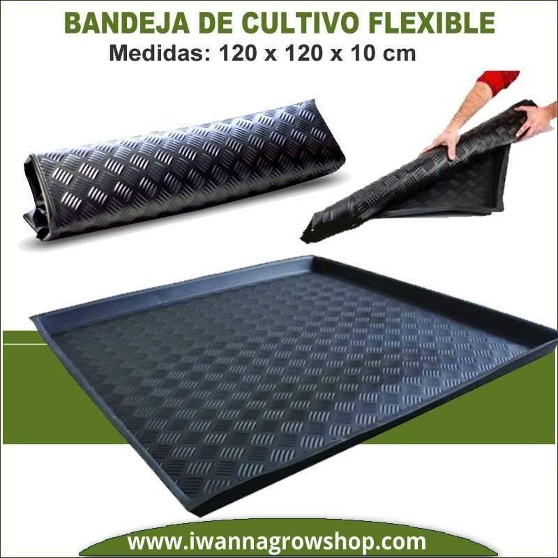 Bandeja Flexible 120x120x10 cm