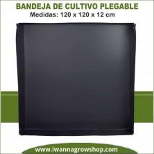 Bandeja cultivo plegable Neptune H. 120x120x12
