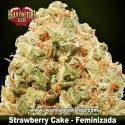 Strawberry Cake – Feminizada – Heavyweight Seeds